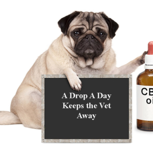 Dog holding sign saying A Drop A Day Keeps the Vet Away, with bottle of CBD oil next to it